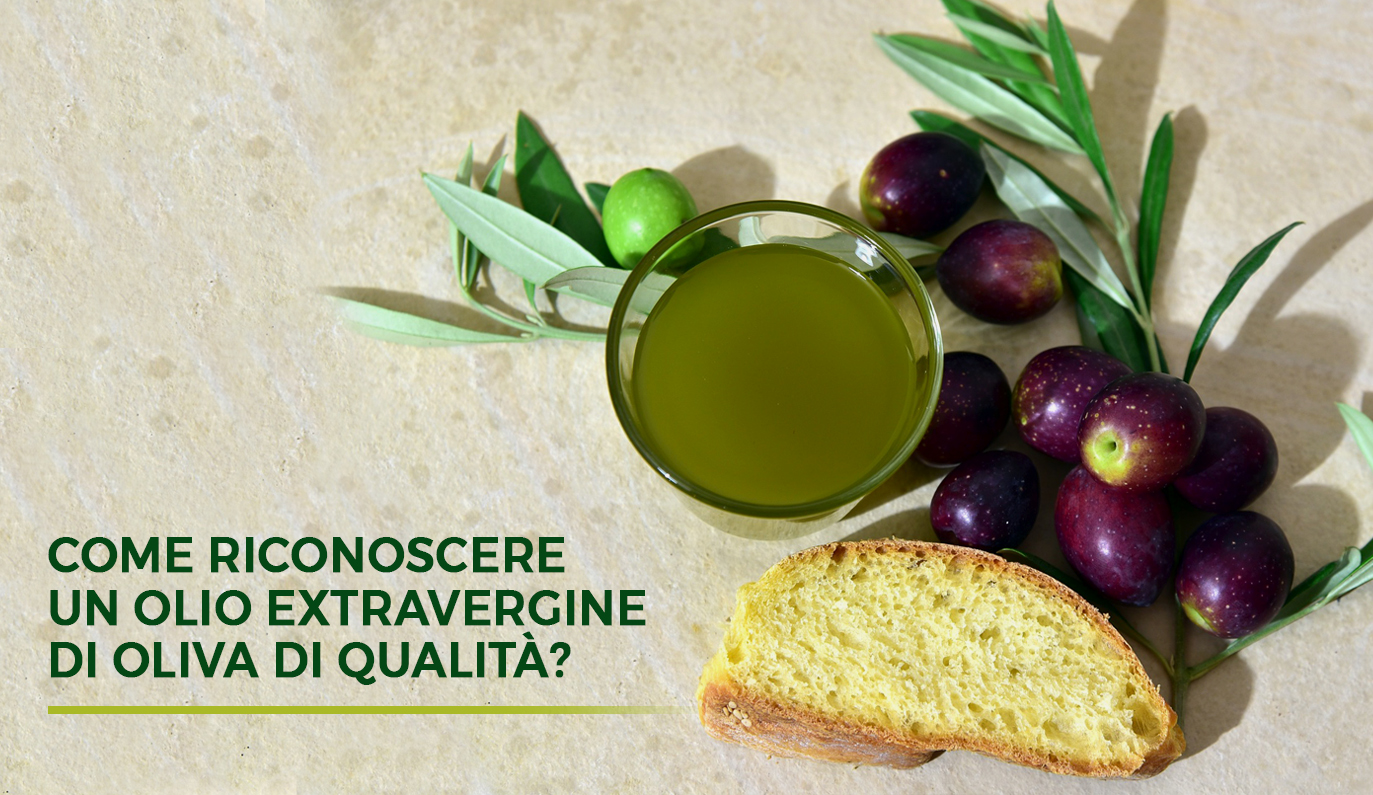 Come riconoscere un olio extravergine di oliva di qualità?